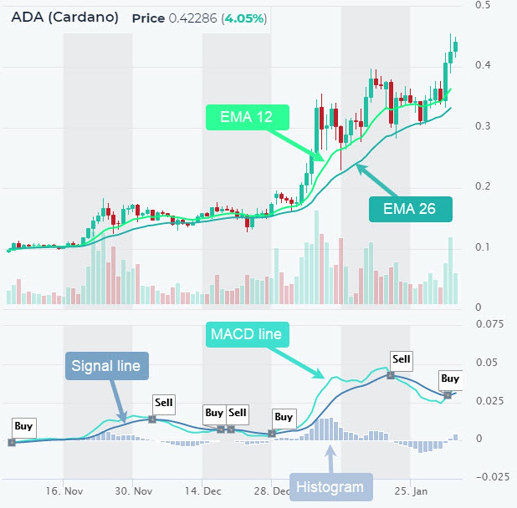 Cryptocurrency trading - MACD signals